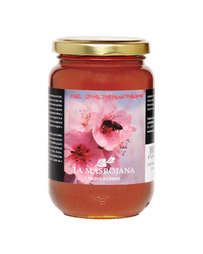 Catalan Wild Flower Honey